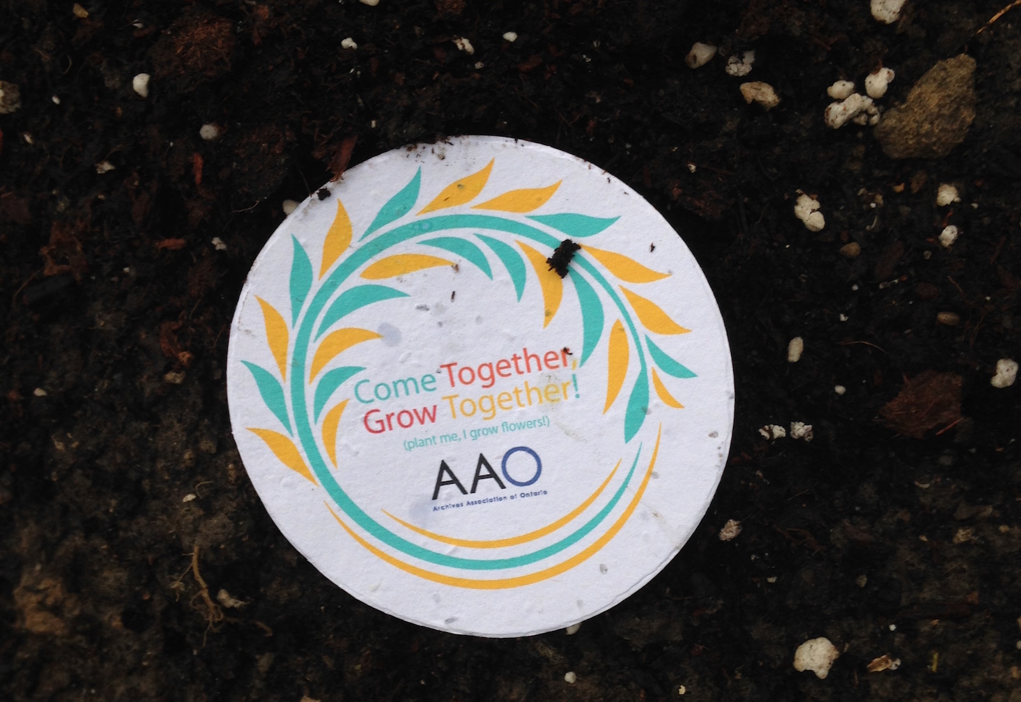 AAO conference plant disc
